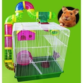 c hamster com