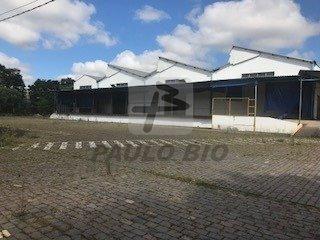 galpao industrial - distrito industrial (cdi) - ref: 6219 - v-6219