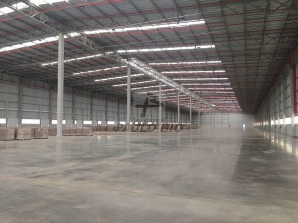 galpao industrial - dona catarina - ref: 4896 - l-4896