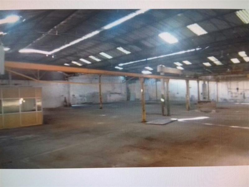 galpão com 1.600 m² - 13042