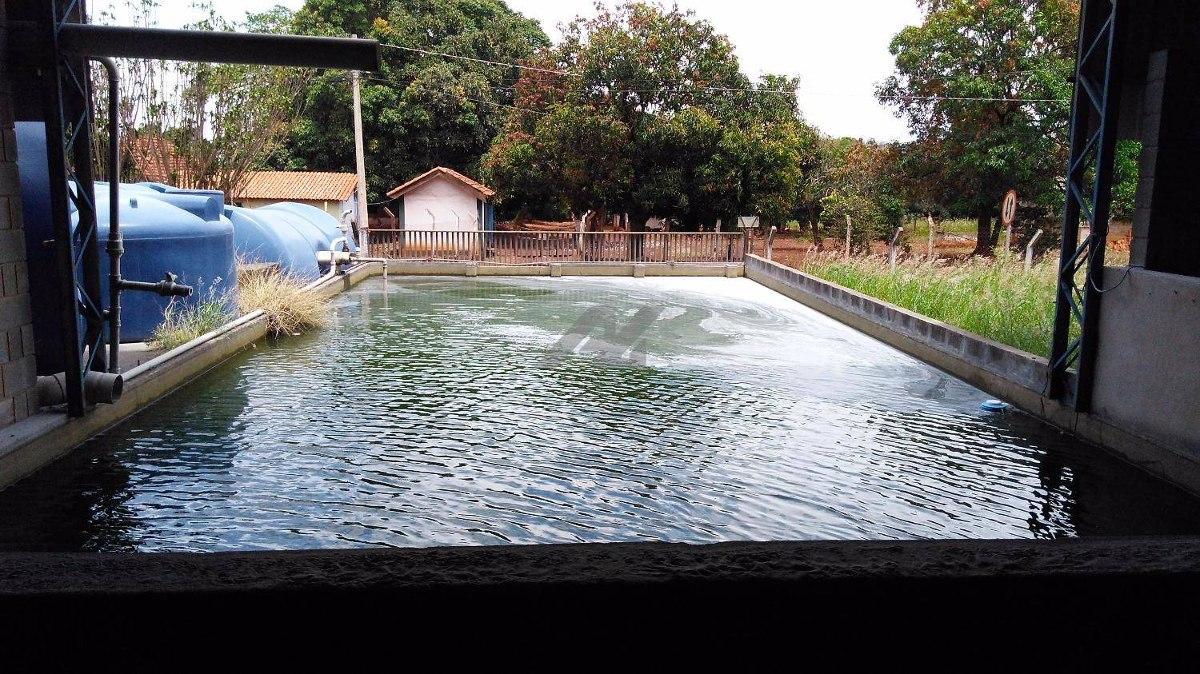 galpão para aluguel em betel - ga010177