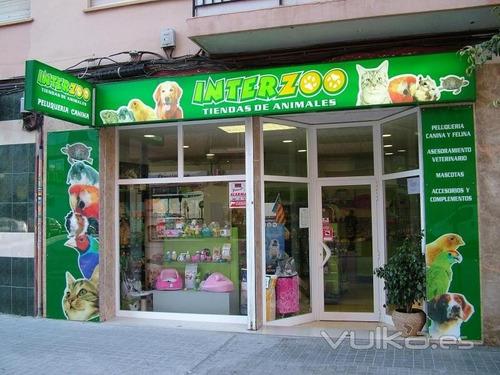 gana dinero como poner una tienda de mascotas guía negocio!!