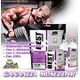 Best Gainer De Peso 5 Kg Proteina + Polo + Chort + Chaker
