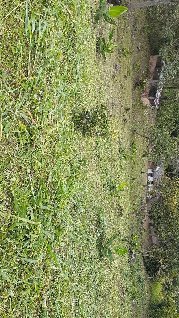 ganga vendo lote de una fanegada 6.400 metros cuadrados