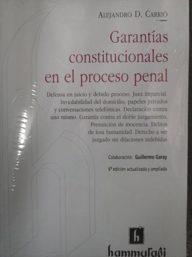garantias constitucionales en el proceso penal de carrio