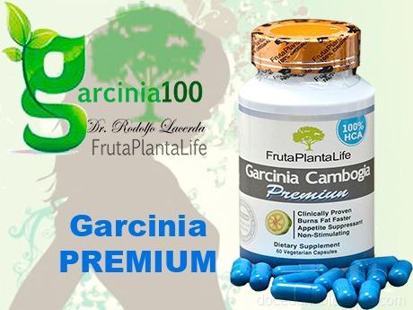 Garcinia Cambogia Premium Fruta Planta Life Garcinia100 R