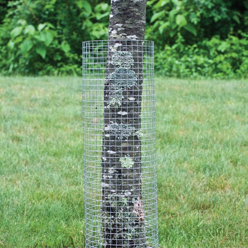 garden zone 24 inches x 100 feet 19 gauge galvanized hardwar