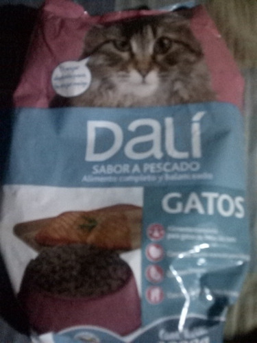 gatarina dali carne/pescado 1 kg entrega a domicilio
