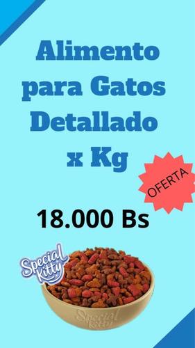 gatarina por kilos