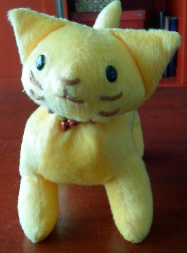 gato amarillo en aloba