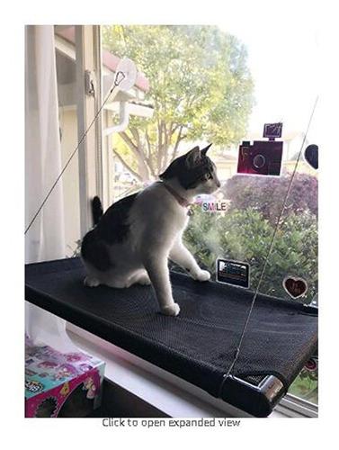 gato de percha de ropa ventana cama de gato gato de hamac