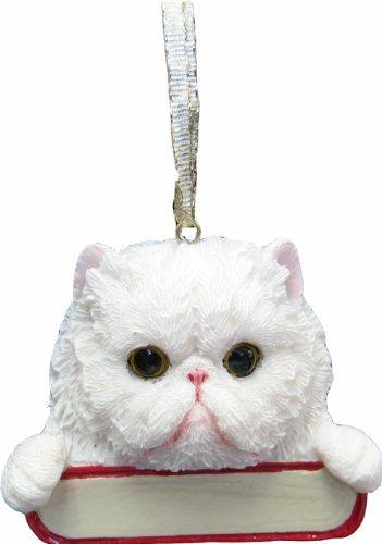 gato persa adornos \pals de santa\ con la placa de identifi