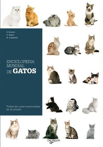 gatos enciclopedia mundial de