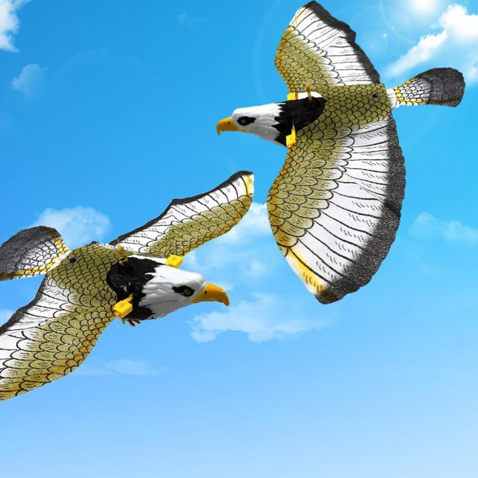 gavião Águia pássaro falcão gaivota voadora À pronta entrega r 49
