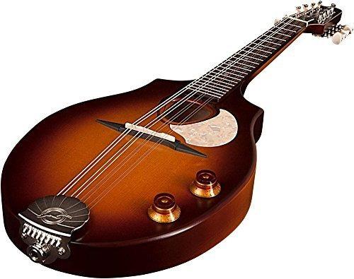 gaviota s8 mandolina sunburst
