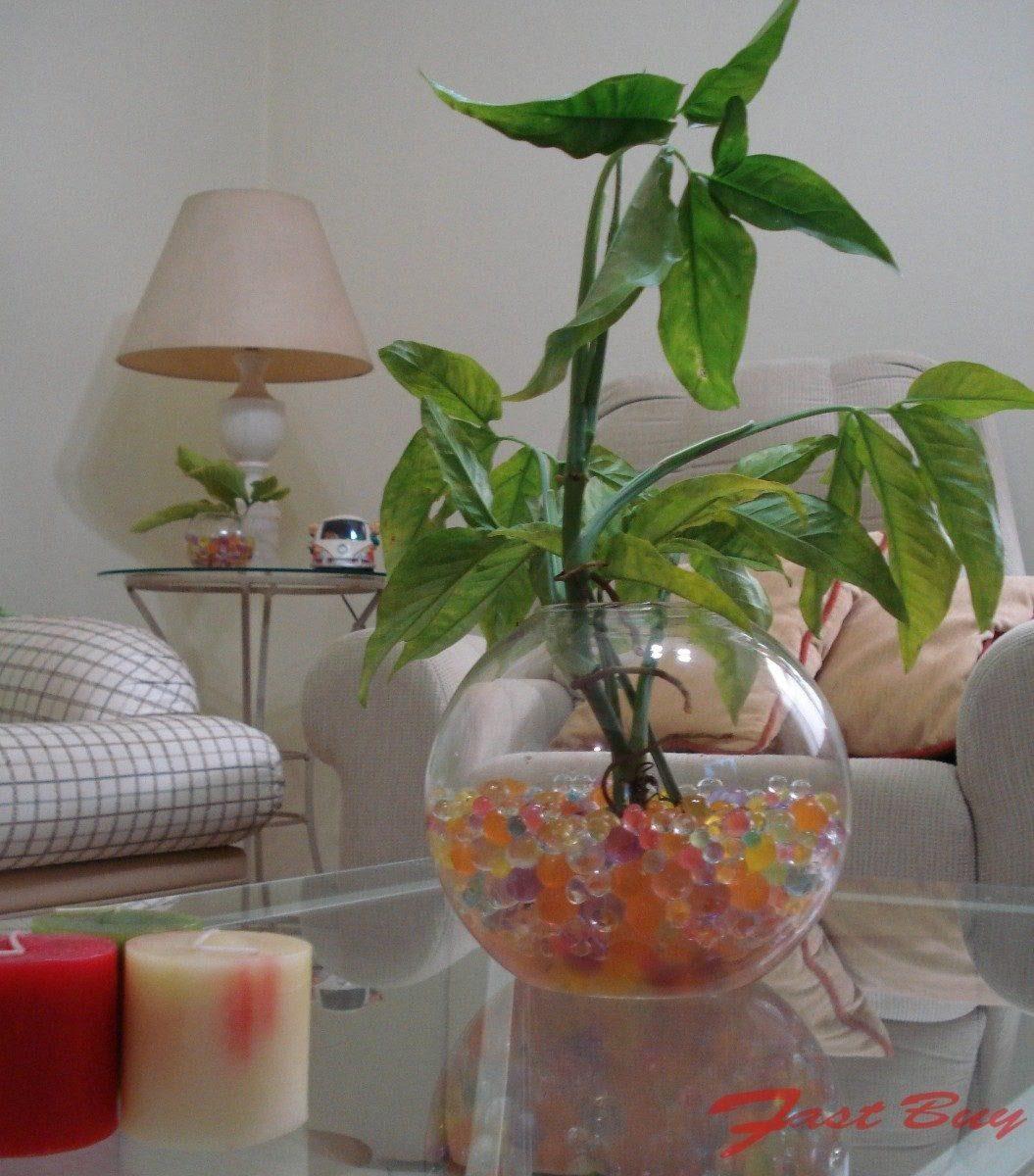 22aae725a gel cristais crescem na água decoração plantas vasos 50unid. Carregando  zoom.