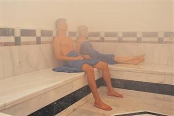 Generador de vapor para sauna o ba o turco u s 759 00 en mercado libre - Sauna finlandesa o bano turco ...