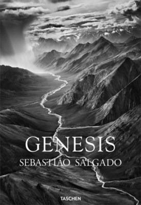 genesis - salgado sebastiao (libro)