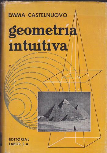 geometría intuituva.  emma castelnuovo.