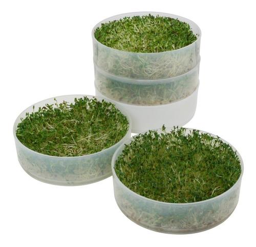 germinador brotes vegetariano savic semillas y granos bioset