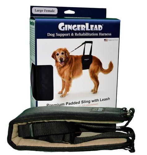 gingerlead perro de asistencia y la rehabilitación arnés con