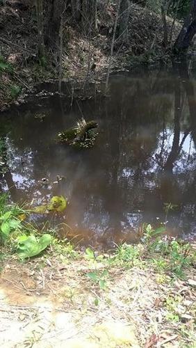gl faça parte da calmaria do interior terreno p/ chácara