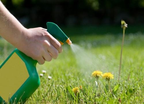 glifosato herbicida mata yuyo control de malezas 1 litro 66%