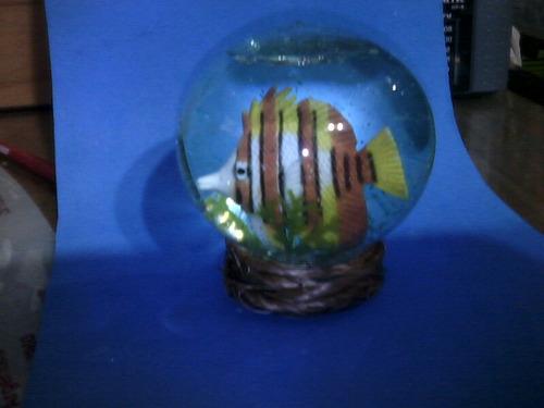 globo de nieve con pez