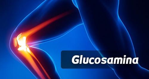 glucosamina sulfato puro usp 250 gramos