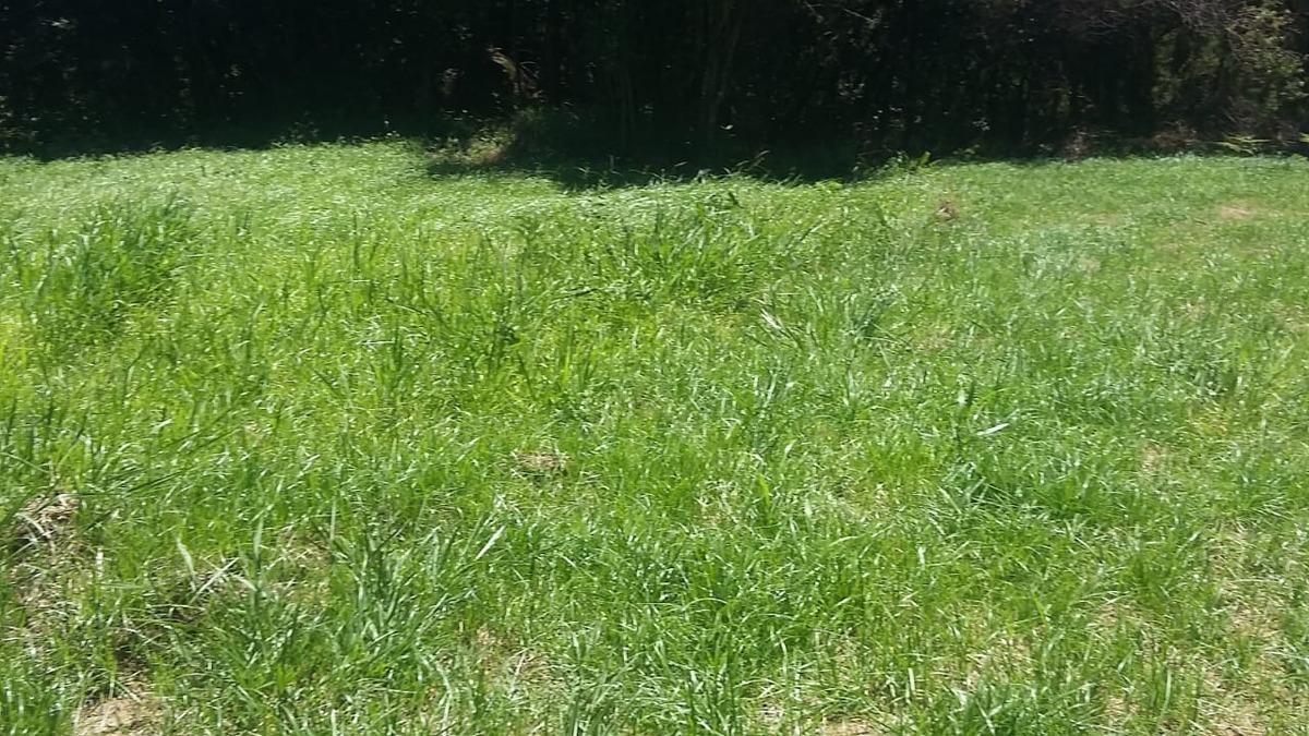g.m - terrenos em ibiúna plainos venha conhecer