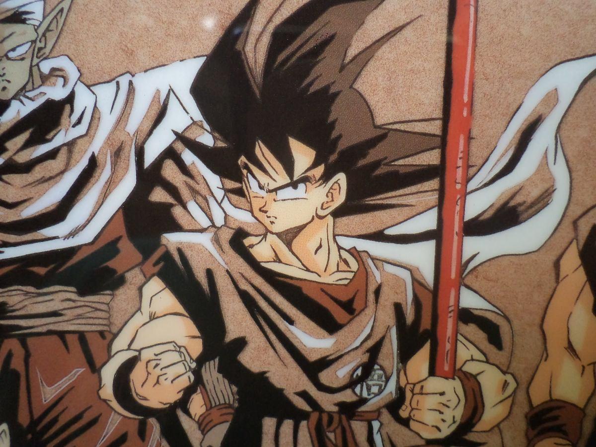 Goku Gohan Vegeta Y Compañía Poster Plastico Doble Vista