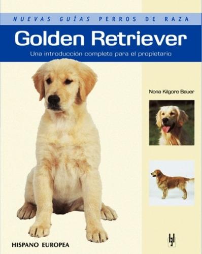 golden retriever - guías perros de raza, bauer, hispano