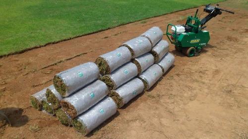grama especial para campos deportivos y áreas verdes