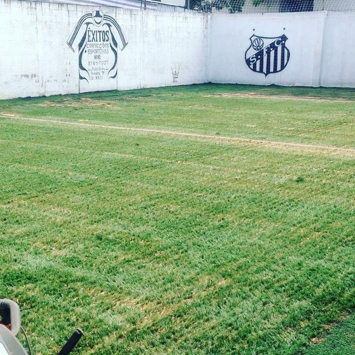 Grama Sintética Esportiva 40mm - Campo De Futebol - R  39 e2a0c8b6a86de