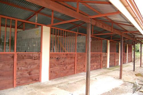 gran casa de campo, 4dorm/3banos con establos p. 6 caballos