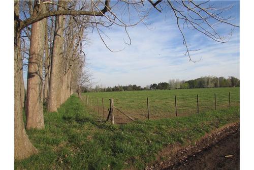 gran chacra ubicada frente a cancha de polo