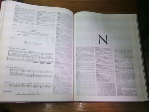 gran diccionario general de la lengua española dividido en 2
