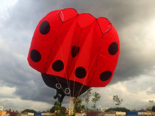 gran kite papalote 3d catarina 2mts2 superficie