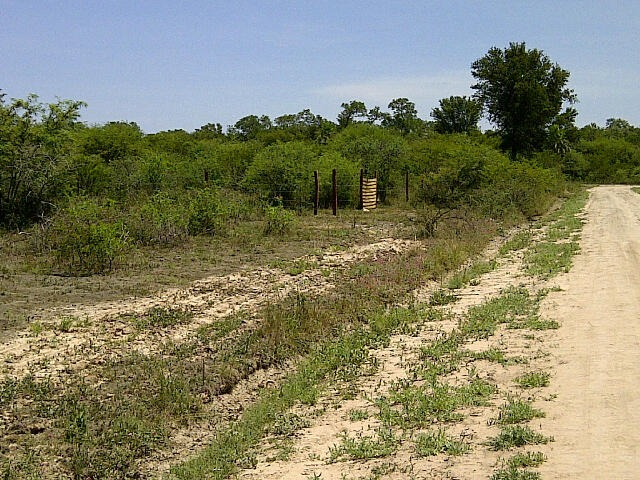 gran terreno en bo ayelén