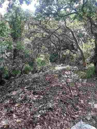 gran terreno en hacienda valle escondido
