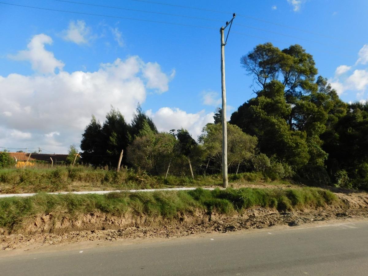 gran terreno en pinares atlantida venta campo