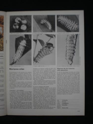 gran zoo. enciclopedia de la vida animal. brugera. n°65