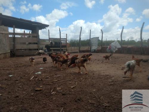 granja a venda em macaíba