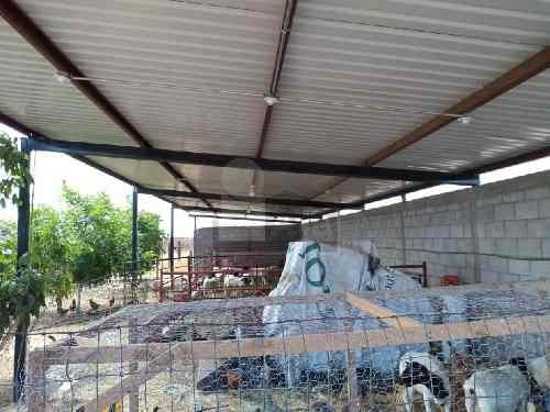 granja en venta en ejido ocampo