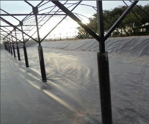 granjas de producción acuicola (camarón, tilapia, moluscos)