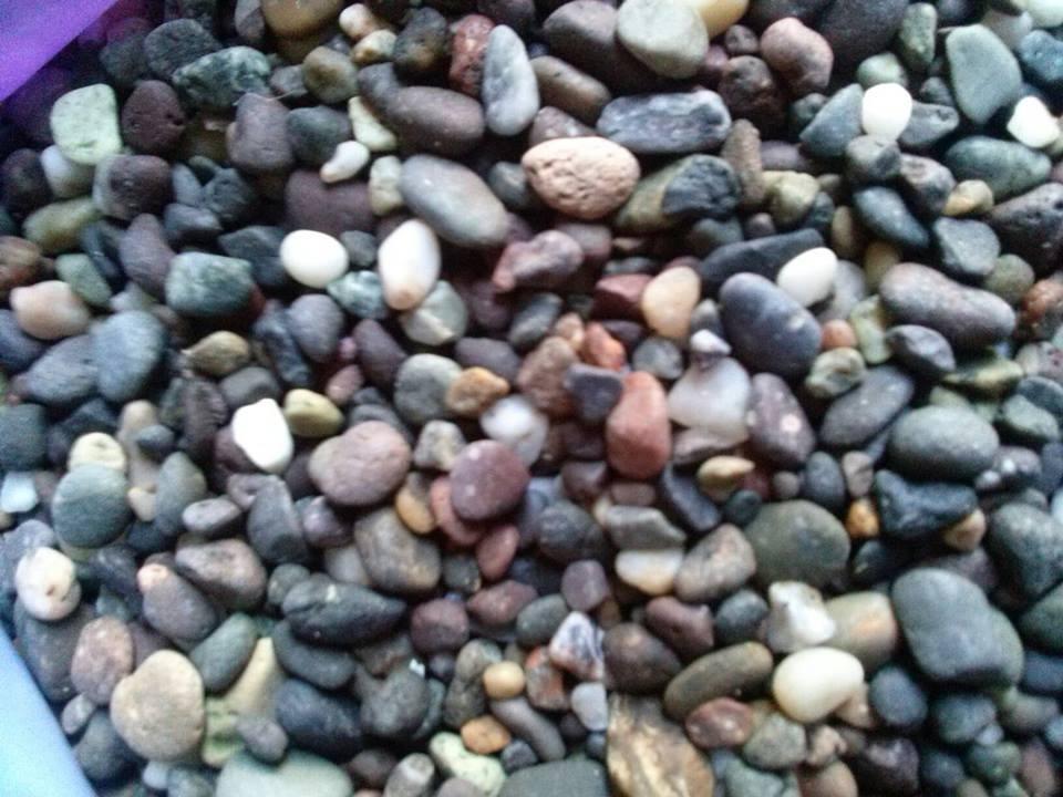 Grava piedra de rio chica colores paquete 20kg for Grava de colores para jardin