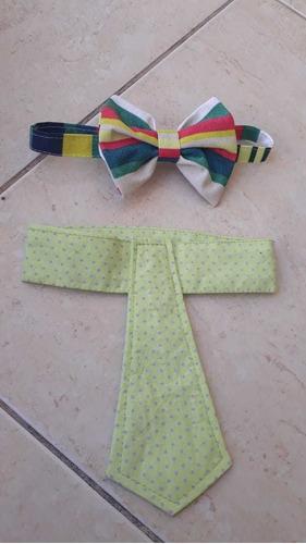 gravatas para caes e gatos