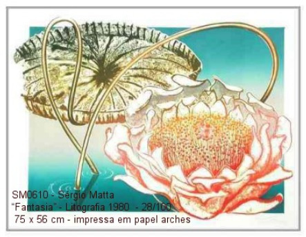 gravura litografia - sergio matta - 75x56 ag359 ag356