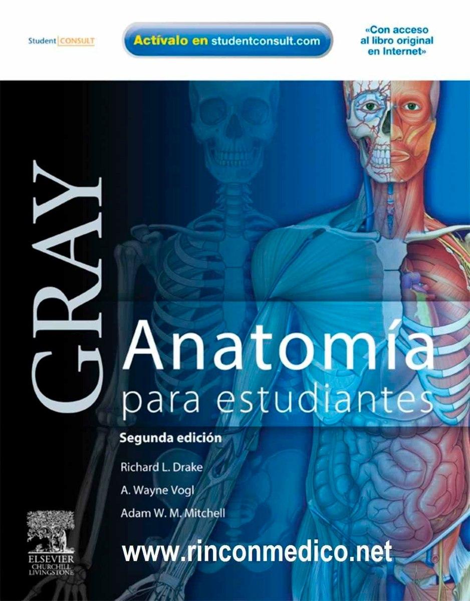 Magnífico Adam Anatomía Libre Foto - Anatomía de Las Imágenesdel ...