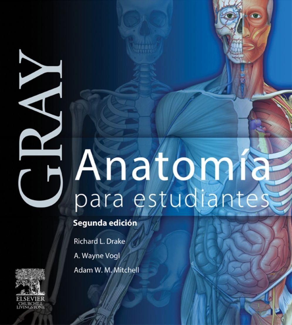 Gray, Anatomía Para Estudiantes 2da Edicion Pdf - $ 6.000 en Mercado ...